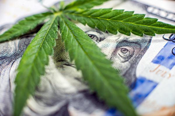 How to Make 30% in One Day on Marijuana Stocks